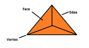 Faces Edges Vertices