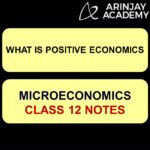 What is Positive Economics