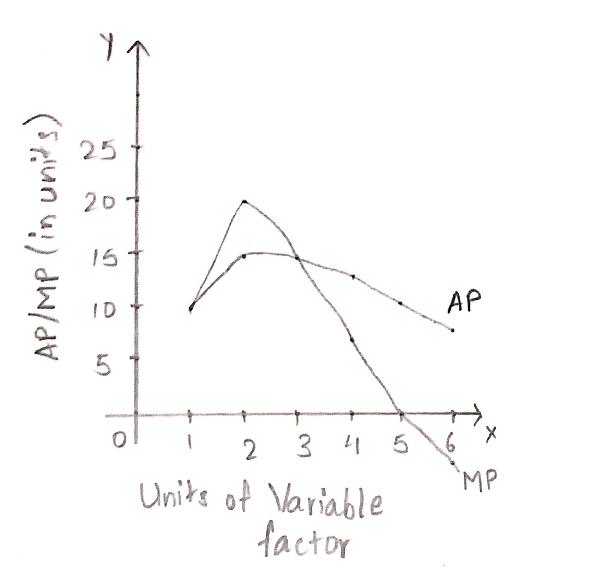 relationship between marginal product and average product