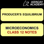 Producer's Equilibrium
