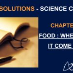 NCERT Solutions for Class 6 Science Chapter 1 - Food : Where does it come from