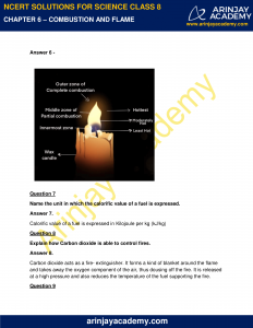 NCERT Solutions for Class 8 Science Chapter 6 image 3