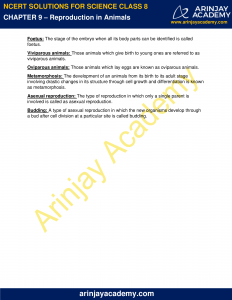 NCERT Solutions for Class 8 Science Chapter 9 Reproduction in Animals image 6
