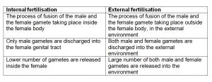 difference between internal and external fertilisation