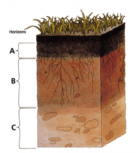 label of soil or sketch of soil