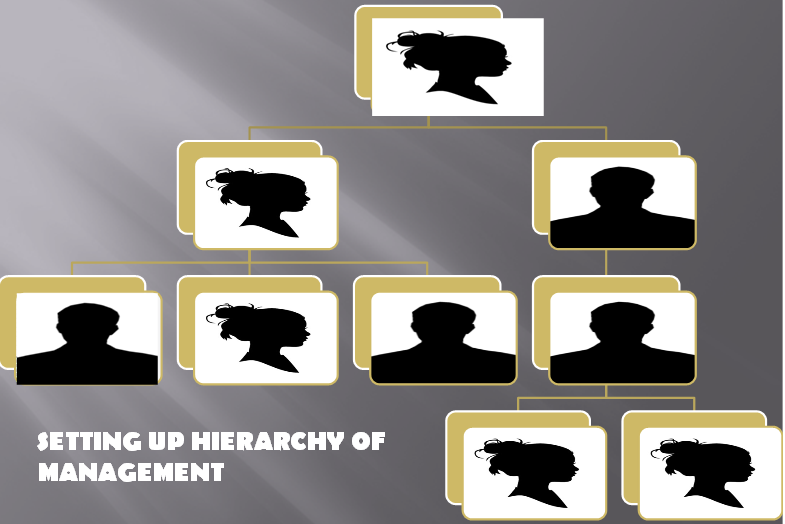 setting up hierarchy of management - Organizing