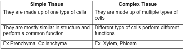 How are simple tissues different from complex tissues in plants
