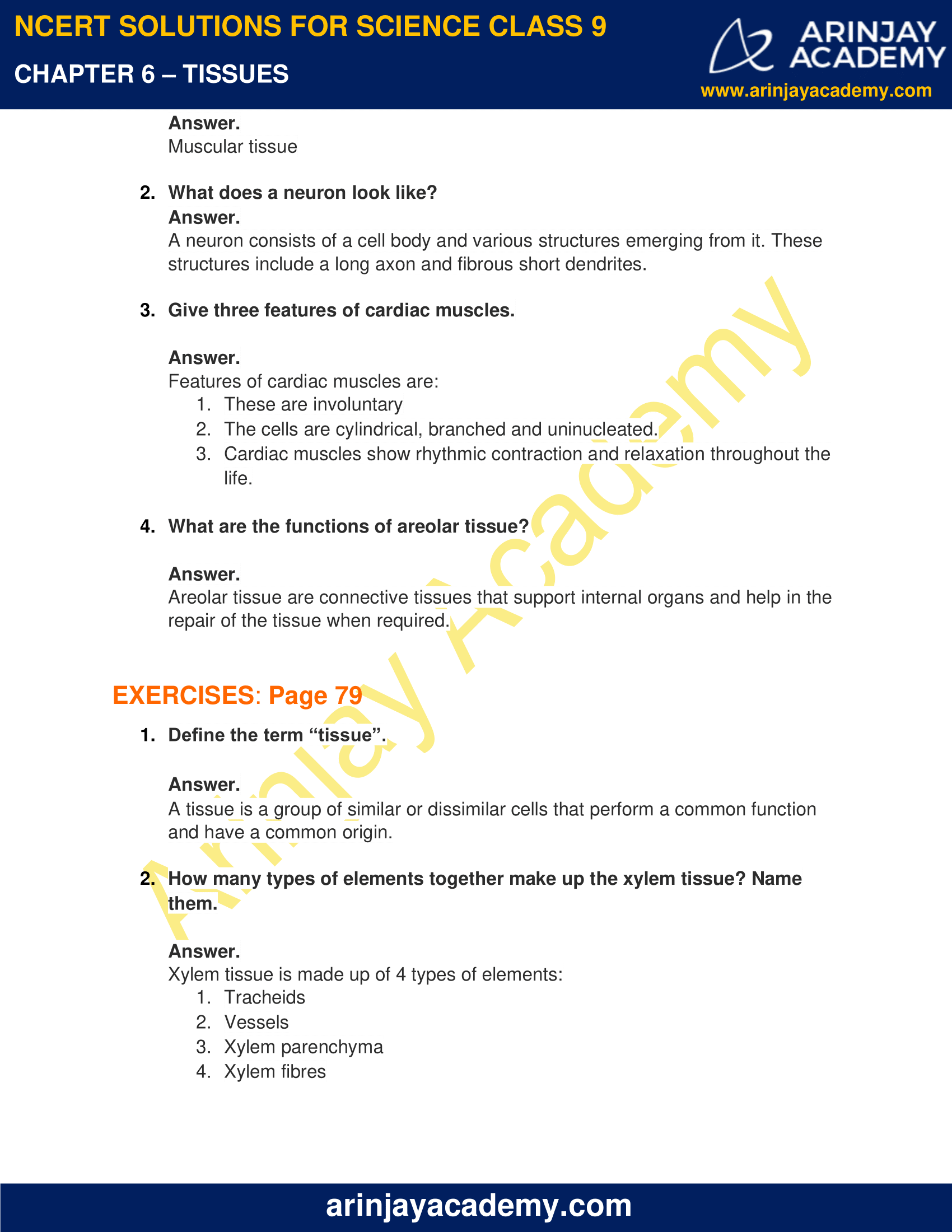 NCERT Solutions for Class 9 Science Chapter 6 - Tissues image 2