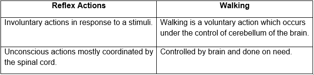 difference between a reflex action and walking