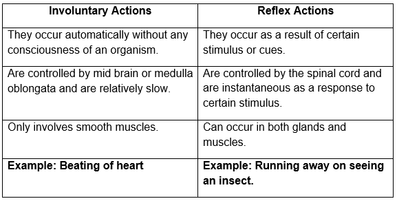 involuntary actions and reflex actions