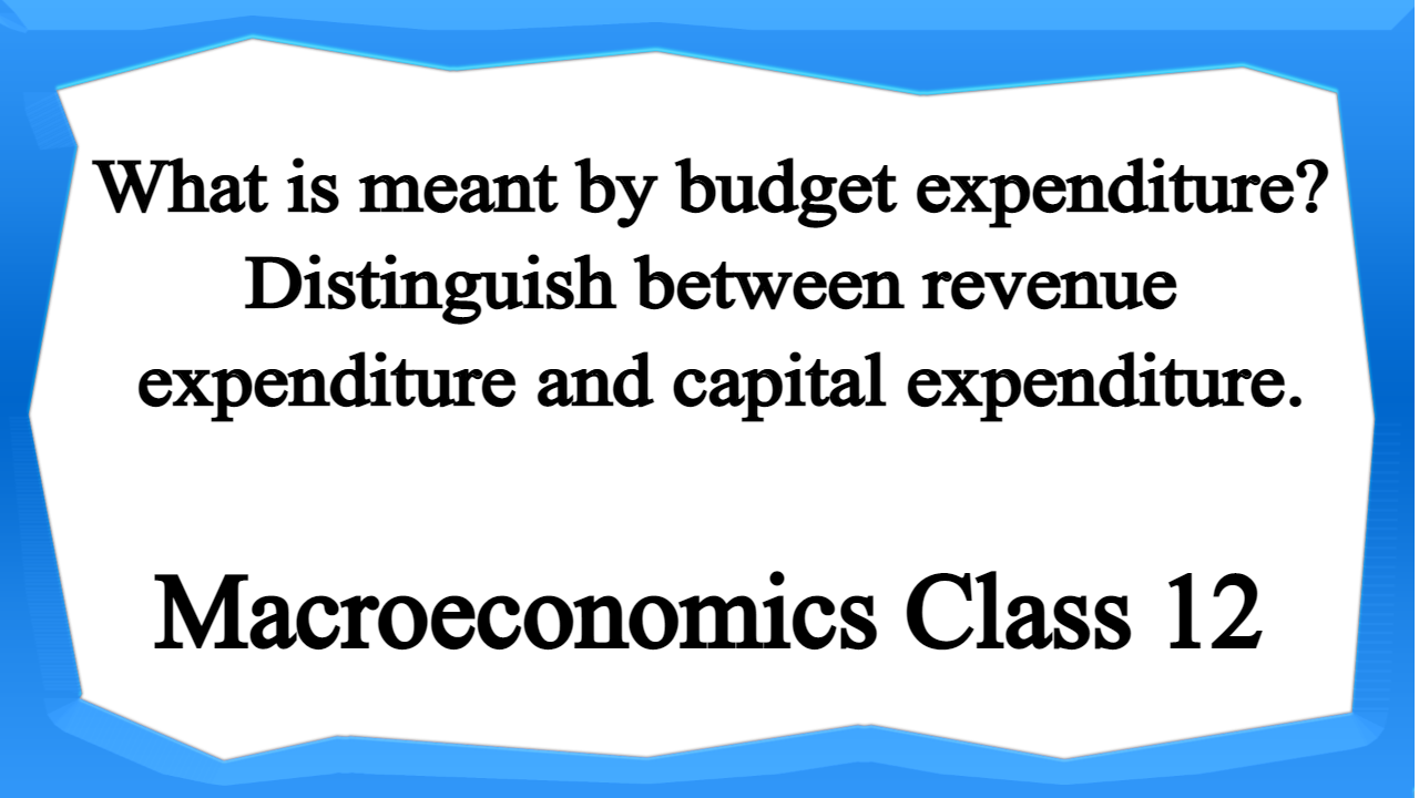 What is meant by budget expenditure Distinguish between revenue expenditure and capital expenditure.
